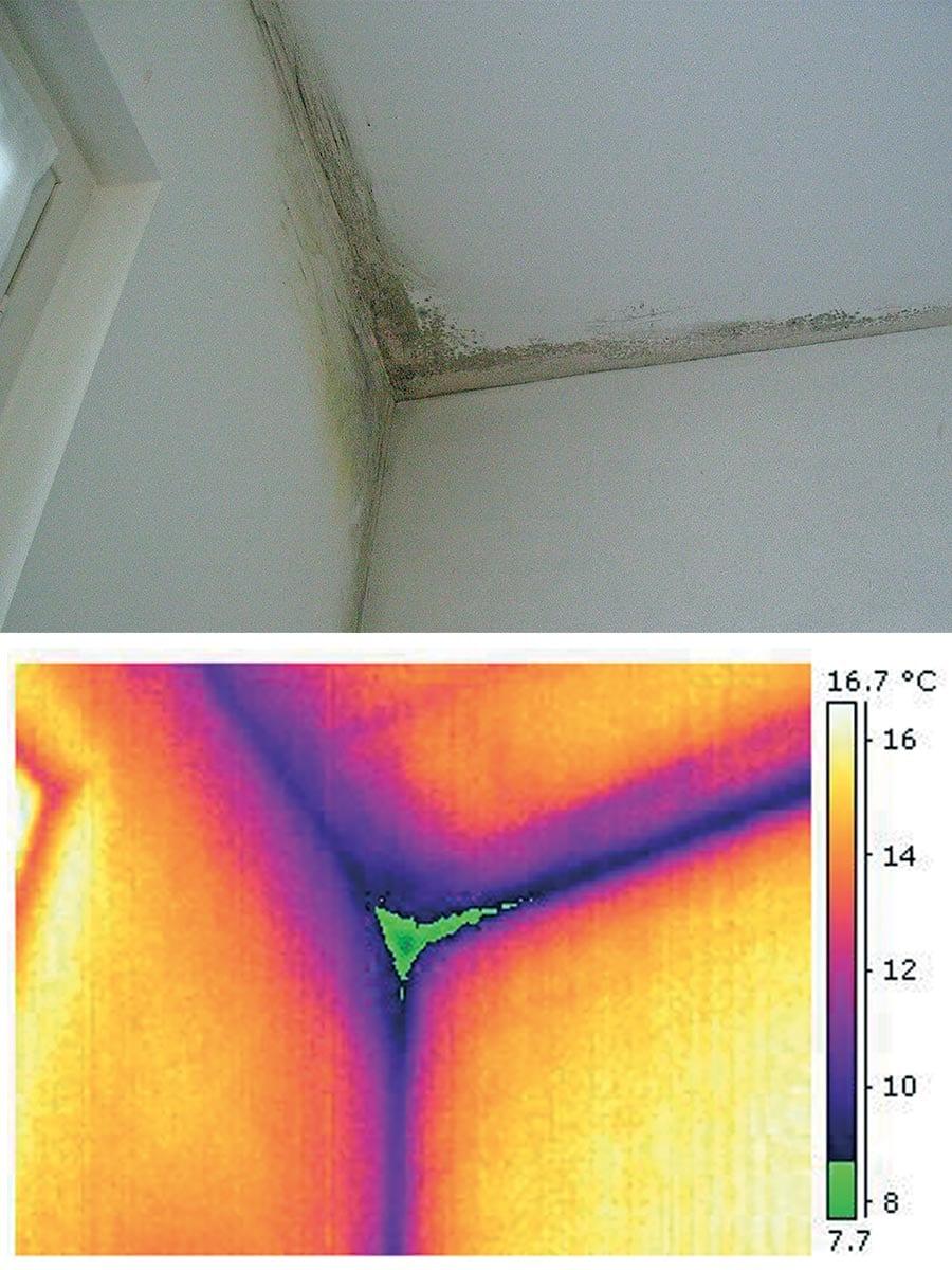 Formazione di muffa e isolamento termico inadeguato